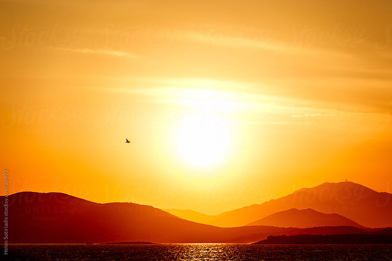 sunset over the sea and mountains, with a bird in flight by Helen Sotiriadis for Stocksy United