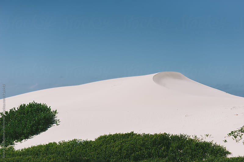 Sand Dune by Bruce and Rebecca Meissner for Stocksy United