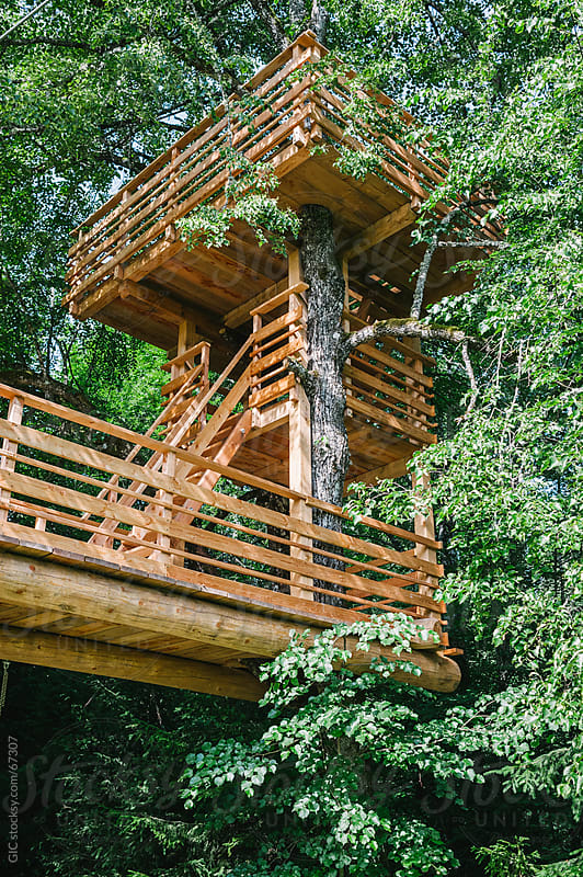 Tree house by WAVE for Stocksy United