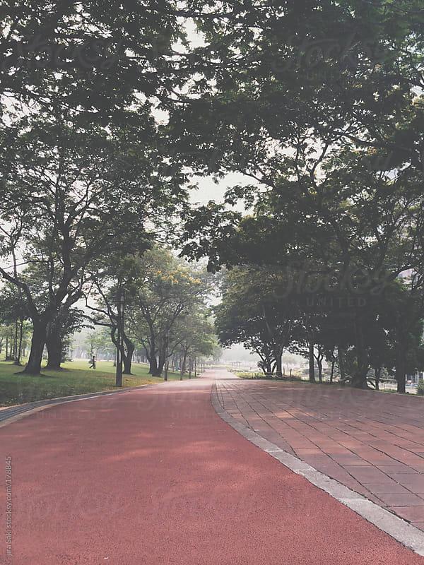 Park by jira Saki for Stocksy United