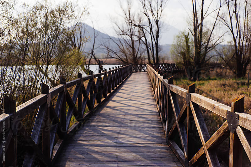 Wooden walk in natural park by Tommaso Tuzj for Stocksy United