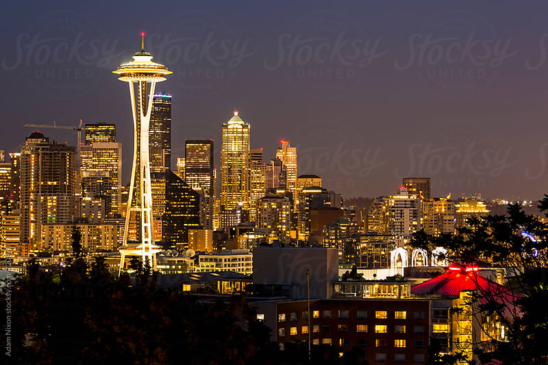 Seattle skyline and Mount Rainier at night by Adam Nixon for Stocksy United