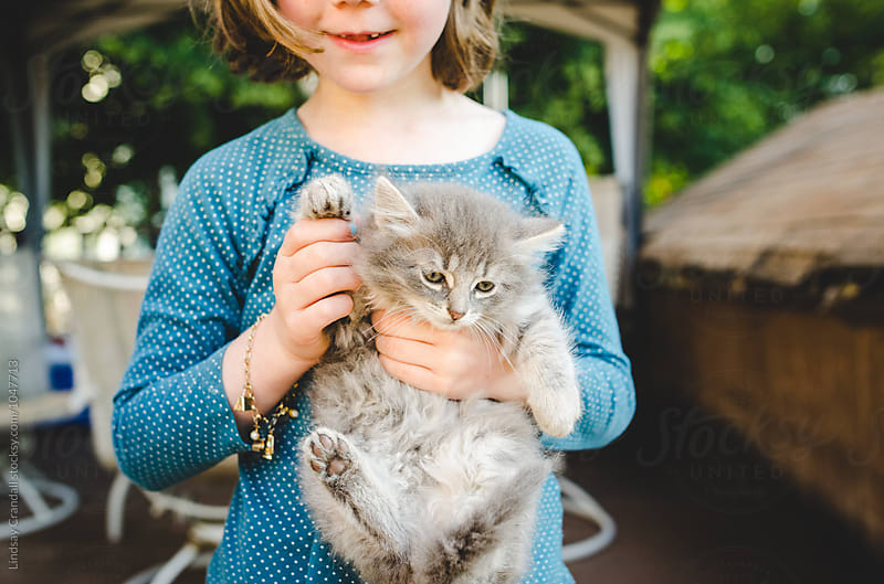 Little girl holding a fluffy kitten by Lindsay Crandall for Stocksy United