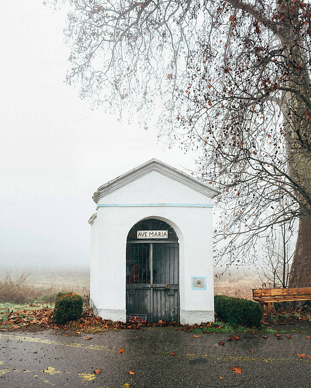 Tiny chapel entitled to Holy Mary under leafless tree in italian countryside by Laura Stolfi for Stocksy United