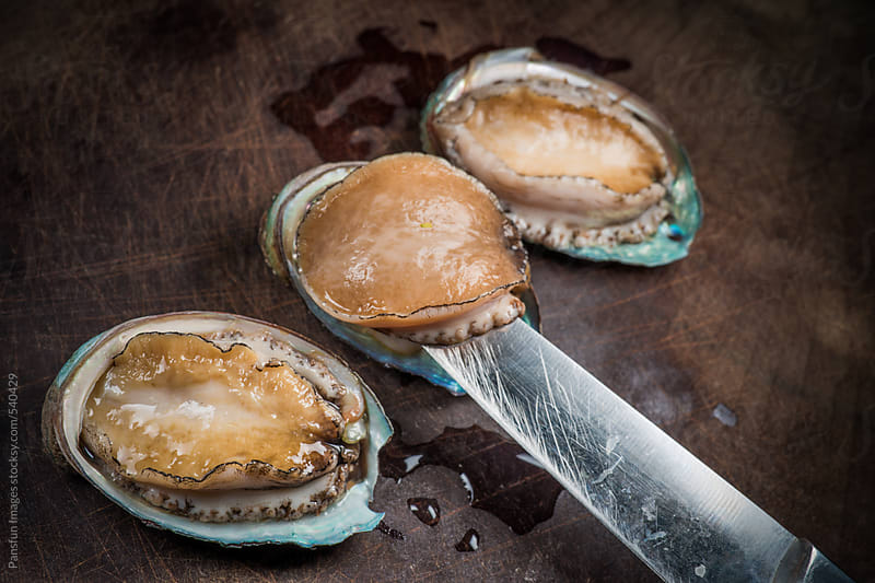 sea food abalone by Pansfun Images for Stocksy United