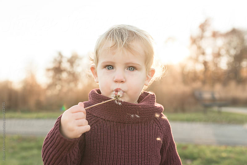 A Child With Blue Eyes Blowing Dandelions by Alison Winterroth for Stocksy United