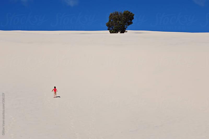 big sand dune on Moreton Island, Australia by Gillian Vann for Stocksy United