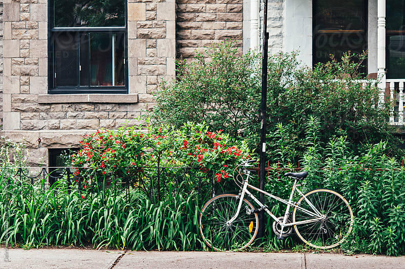 bicycle parked by a lush city garden by Deirdre Malfatto for Stocksy United