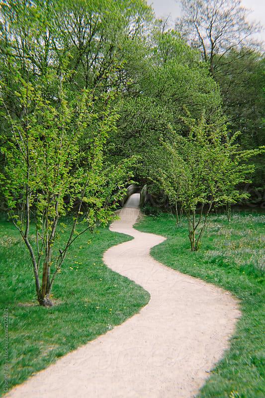 Curvy path leading to a small bridge by Gabriel Tichy for Stocksy United