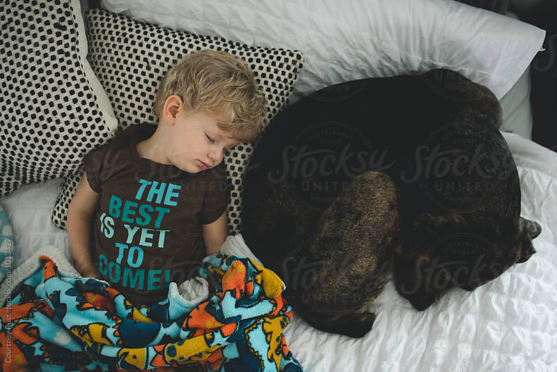 Boy sleeping with Dog (bird's eye) by Courtney Rust for Stocksy United