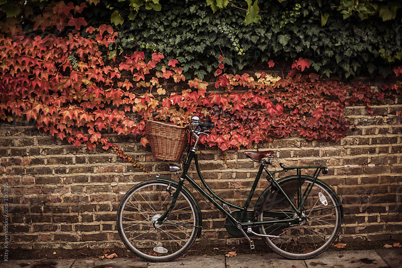 A resting bicycle by Kitty Kleyn for Stocksy United
