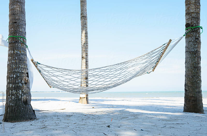 hammock under coconut trees on beach by Lawren Lu for Stocksy United