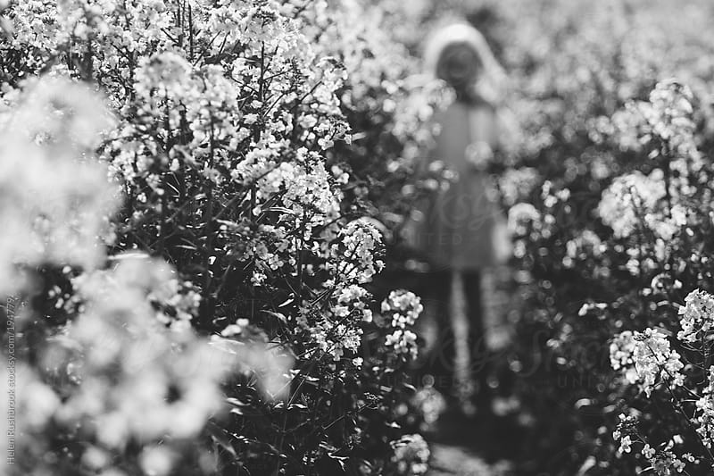 Black and white image of a blurry child in a field of rape by Helen Rushbrook for Stocksy United