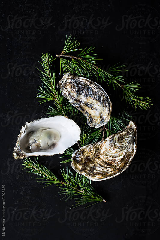 Three oysters on a black background by KEMA Food Culture for Stocksy United