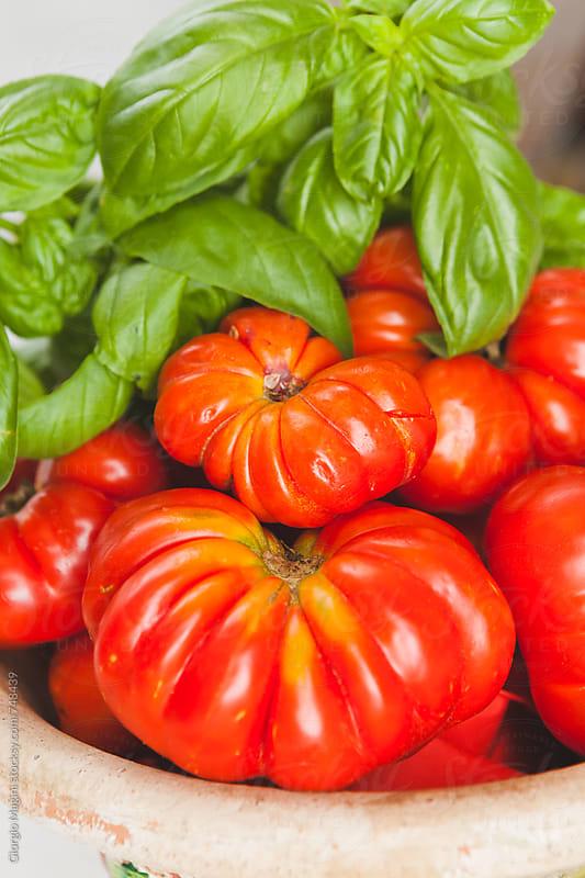 Fresh Basil with Florentine Ribbed Tomatoes, Costoluto Fiorentino by Giorgio Magini for Stocksy United
