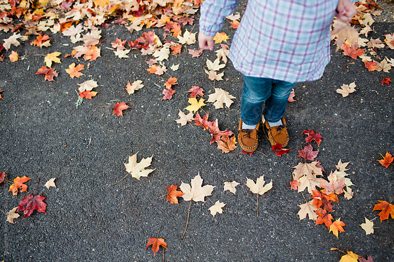 little girl standing in fallen leaves by Meaghan Curry for Stocksy United
