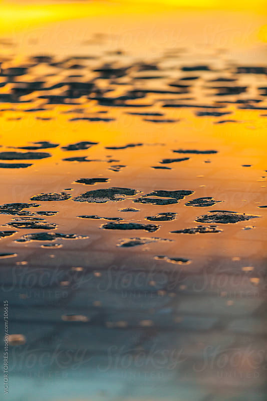 Water Reflections in a Puddle by VICTOR TORRES for Stocksy United