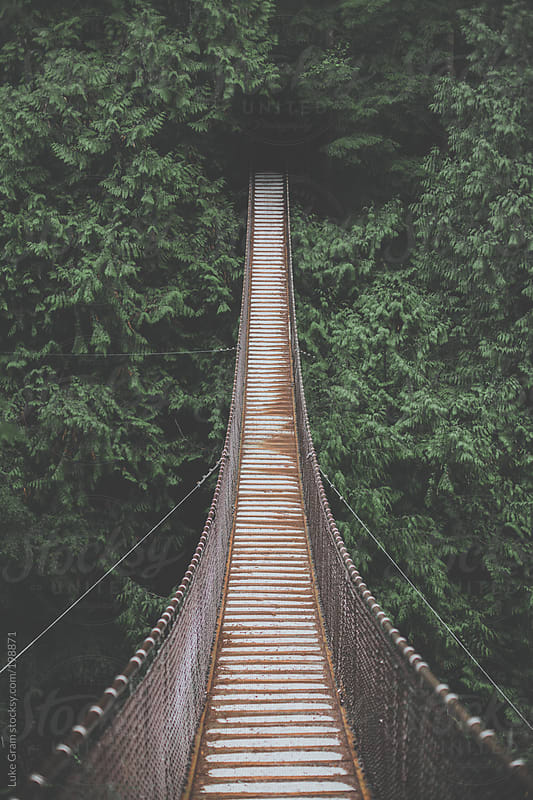 Lynn Valley Suspension Bridge by Luke Gram for Stocksy United