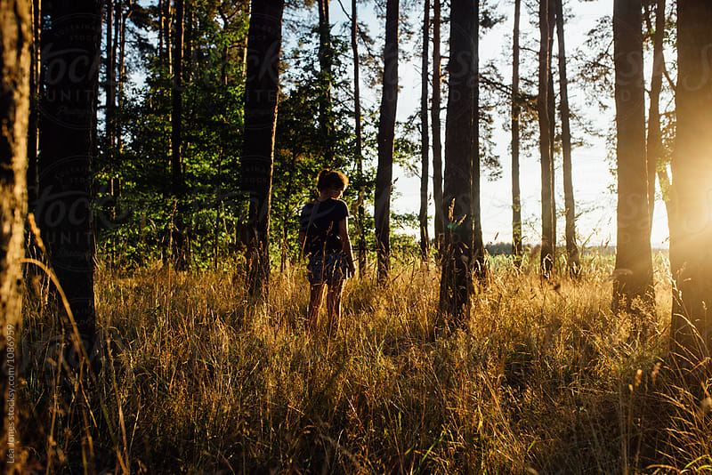 evening walk by the trees at sunset by Léa Jones for Stocksy United