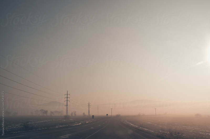 Foggy winter landscape by Tomas Mikula for Stocksy United