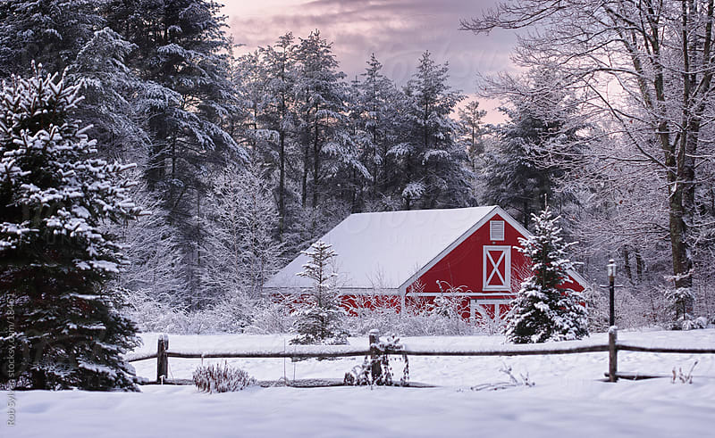 A Red Barn on a Snowy Winter Morning by Rob Sylvan for Stocksy United