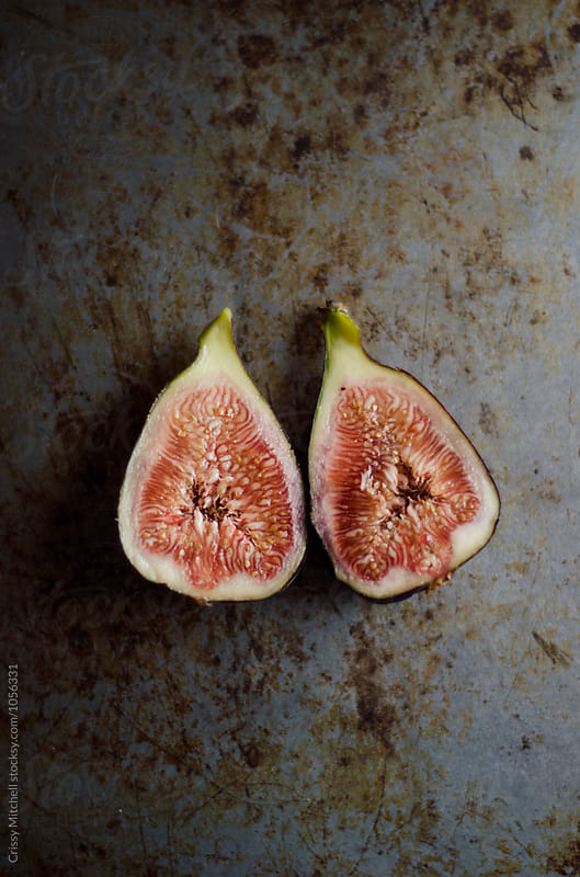 fig by Crissy Mitchell for Stocksy United