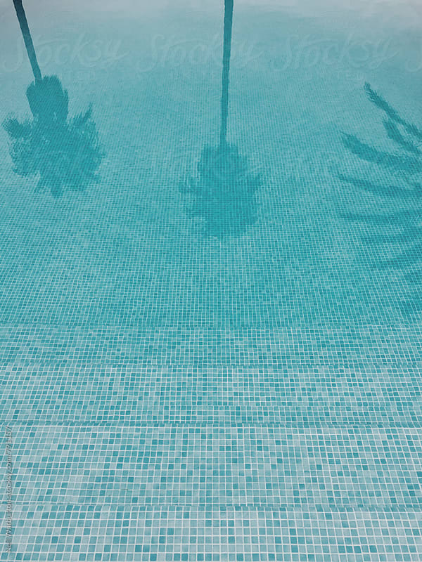 Palm trees reflected in outdoor pool by Neil Warburton for Stocksy United