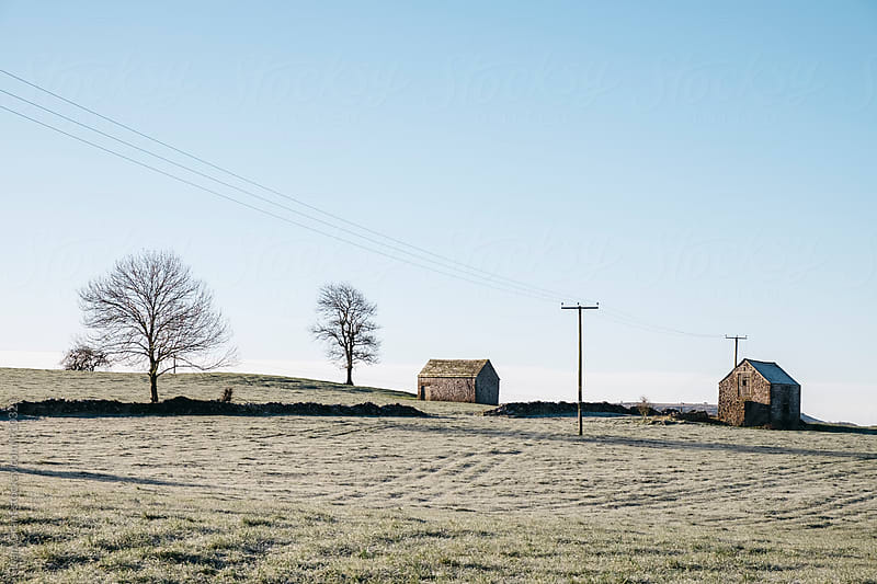Stone barn in a field on a frosty morning. Derbyshire, UK. by Liam Grant for Stocksy United