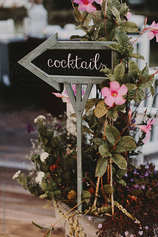 Cocktail Sign with Pink Flowers by Sidney Morgan for Stocksy United