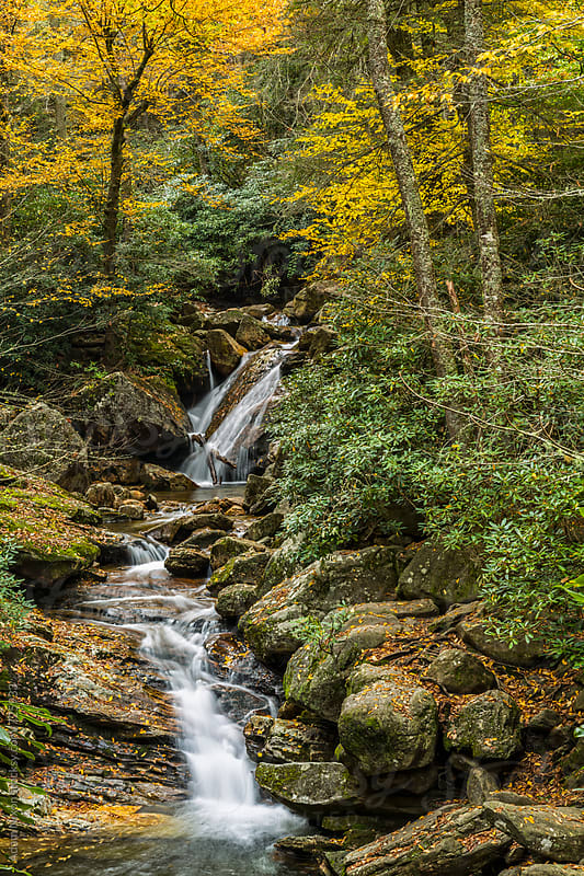 Mountain stream in the fall by Adam Nixon for Stocksy United