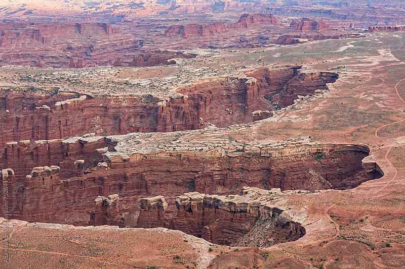 Finger shaped canyons, Canyonlands National Park Utah by Adam Nixon for Stocksy United