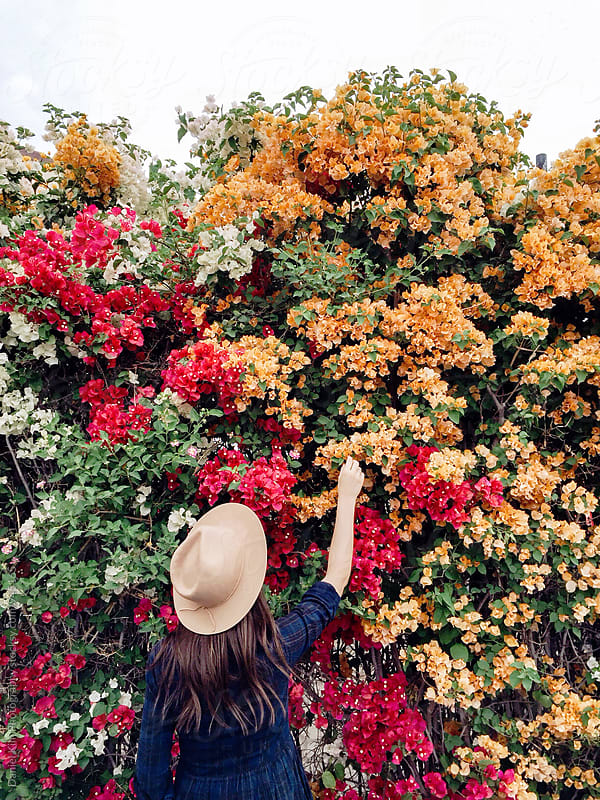 Woman picking flowers by Daniel Kim Photography for Stocksy United