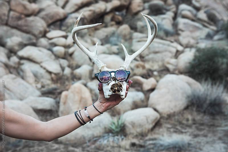 Deer Skull Wearing Sunglasses by MEGHAN PINSONNEAULT for Stocksy United