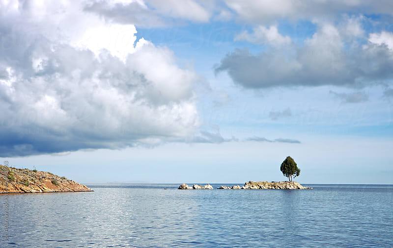 Lone tree on an island by Jon Attaway for Stocksy United