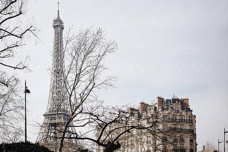 Eiffel Tower by Yann AUDIC for Stocksy United