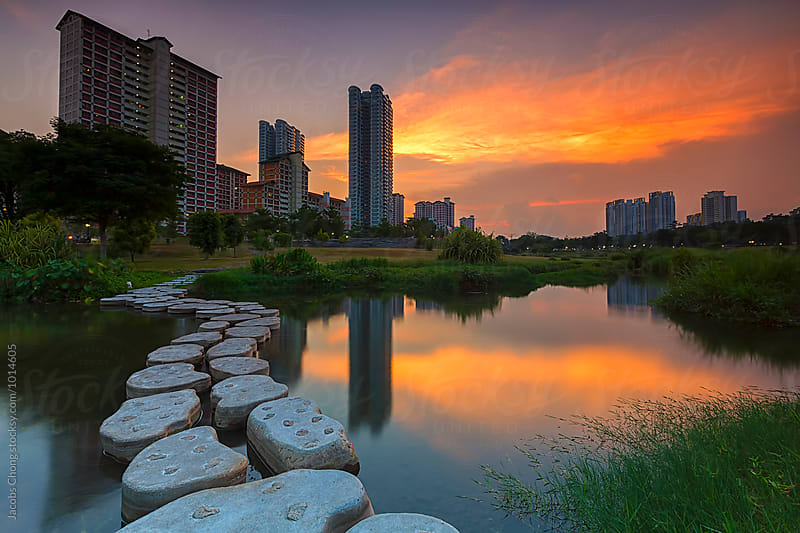 Sunset at Bishan Park, Singapore by Jacobs Chong for Stocksy United