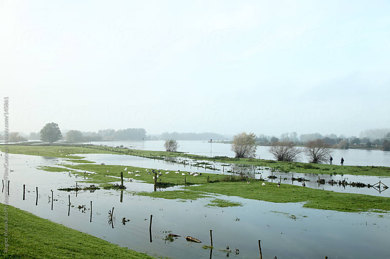 River landscape the Netherlands by Rogier Maaskant Photography/Film/Concept for Stocksy United