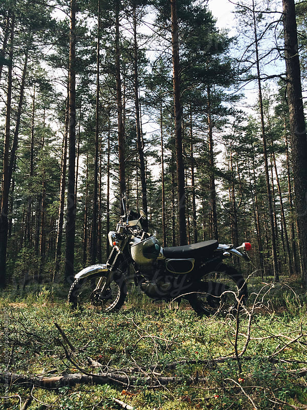 Motorbike in pine forest by Liubov Burakova for Stocksy United