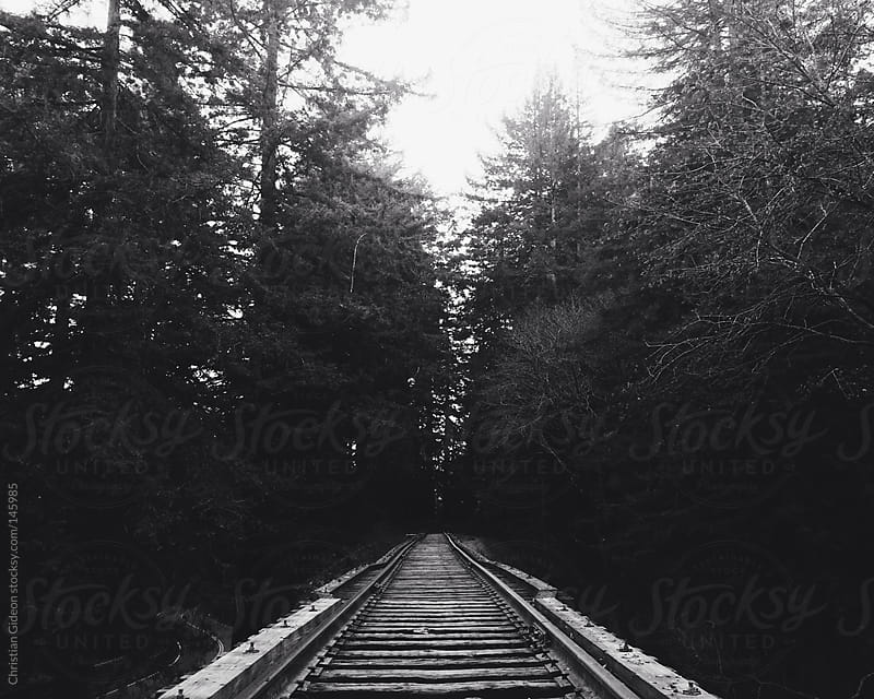 Black and White Railroad in Redwood Forest by Christian Gideon for Stocksy United