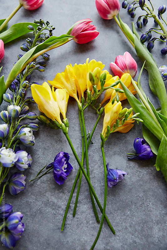 Still Life of colorful Spring Flowers by Trinette Reed for Stocksy United