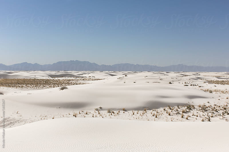 Foot prints at White Sands, New Mexico by Nicole Mlakar for Stocksy United
