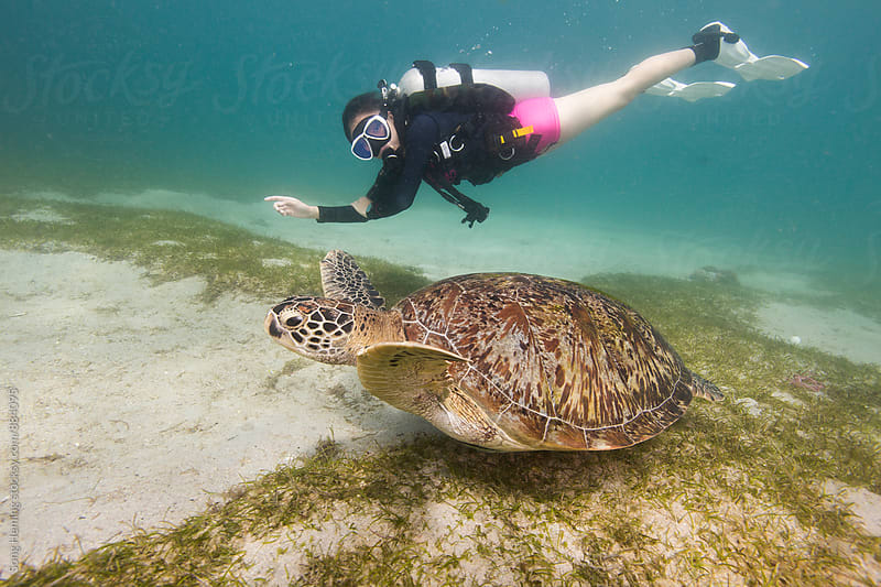 scuba diving with sea turtle by Song Heming for Stocksy United
