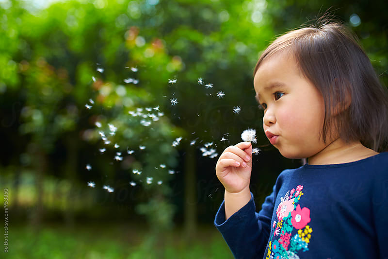 little asian girl blowing dandelion by Bo Bo for Stocksy United