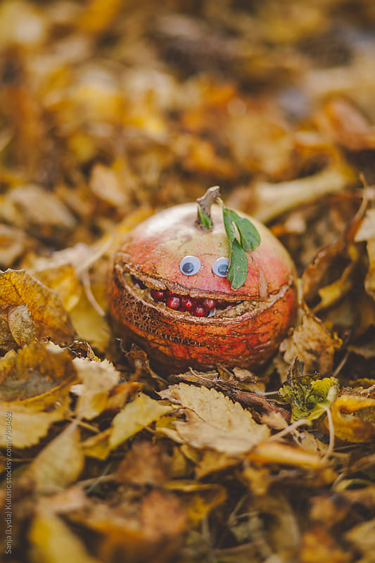 Happy smiley face on fresh organic pomegrante with googly eyes on a pile of leaves by Sanja (Lydia) Kulusic for Stocksy United