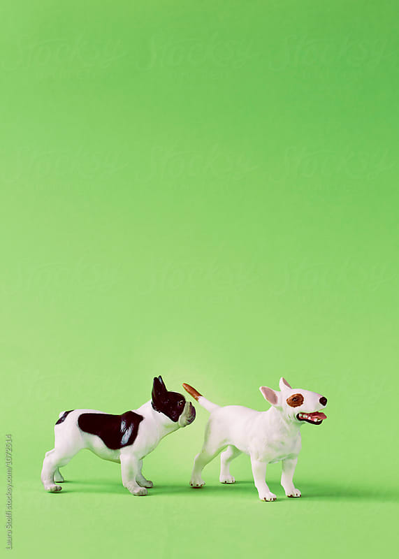 Meet and greet the dog way  by Laura Stolfi for Stocksy United