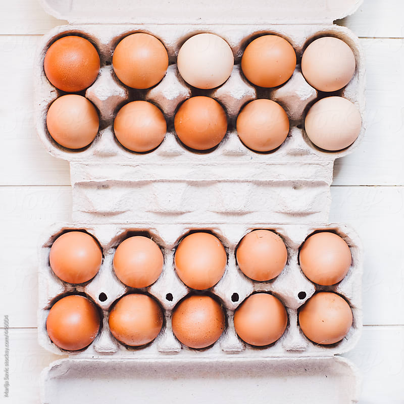 Fresh Eggs in the Carton  by Marija Savic for Stocksy United