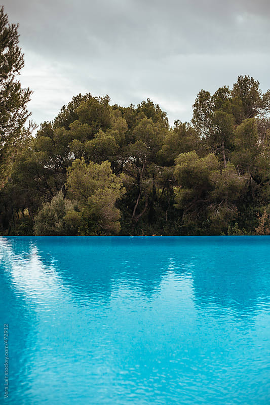 Swimming pool and pinewood by Vera Lair for Stocksy United