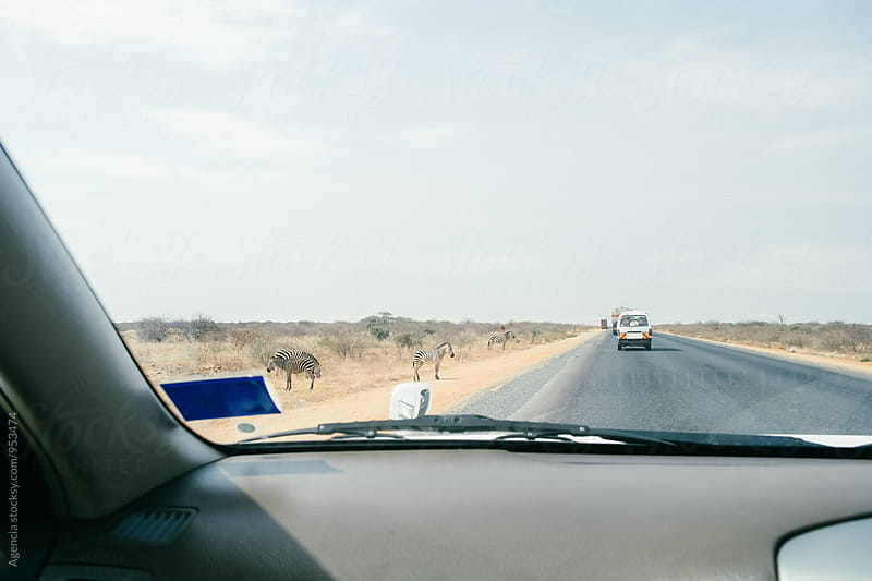 African Road Trip by Agencia for Stocksy United