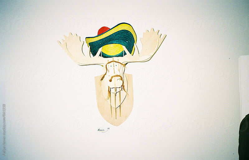 Wooden Deer Head by Felipe Neves for Stocksy United