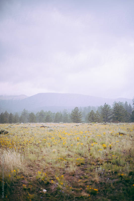 Rainy Mountain View by Beth Johnston for Stocksy United